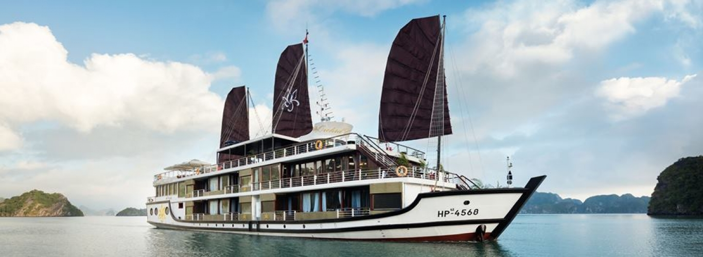 orchid cruises halong